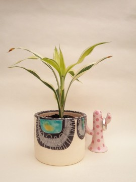Ceramic planter and cactus ringcone